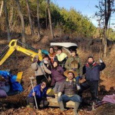 ブルーベリー畑の土壌改良②
